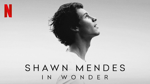Wonder: the portrayal of Shawn Mendes' growth and newfound confidence