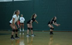 Volleyball player gains experience and friendship