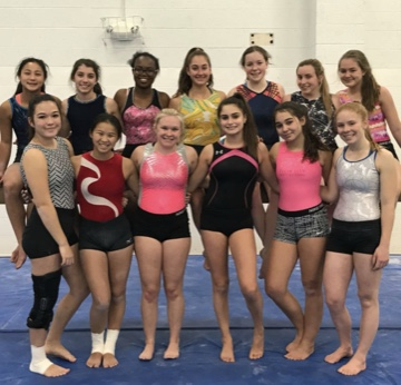 Senior wins big at gymnastics meet